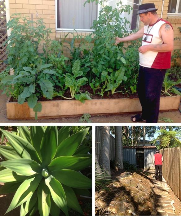 9 garden pics